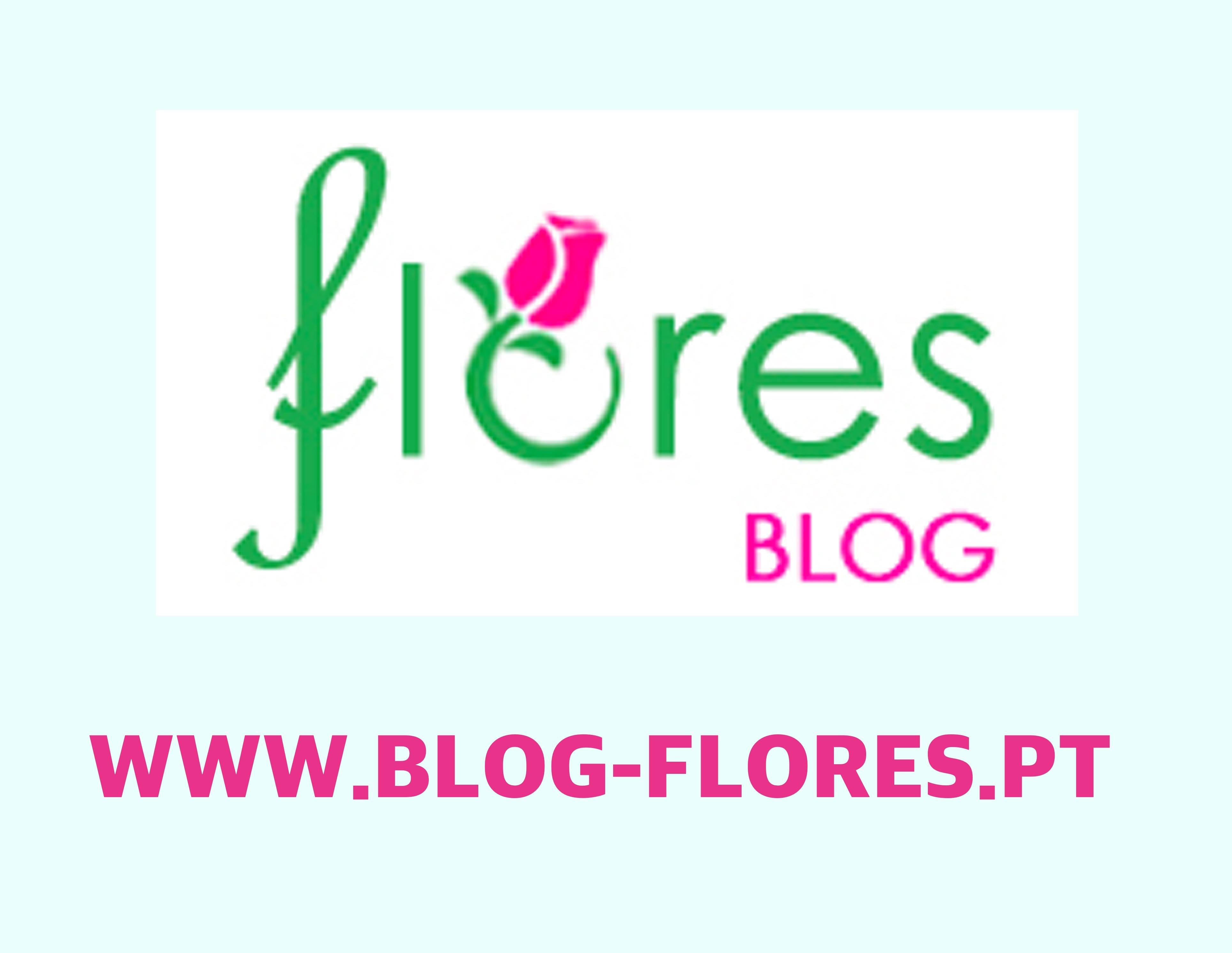 Dicorisandra Commelinaceae