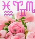 signo e flores foto 44