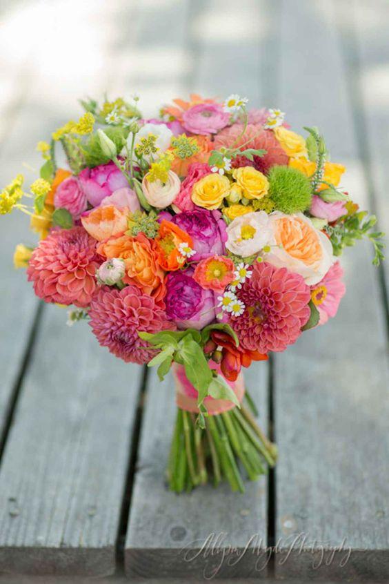 flores foto fr 584