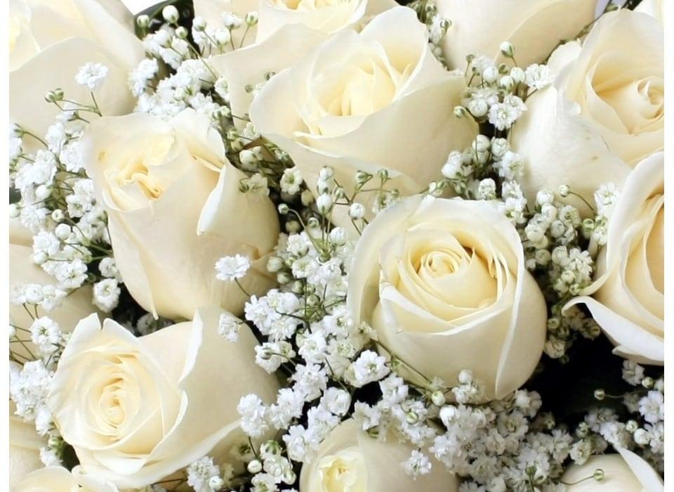 ramos-flores-foto-567