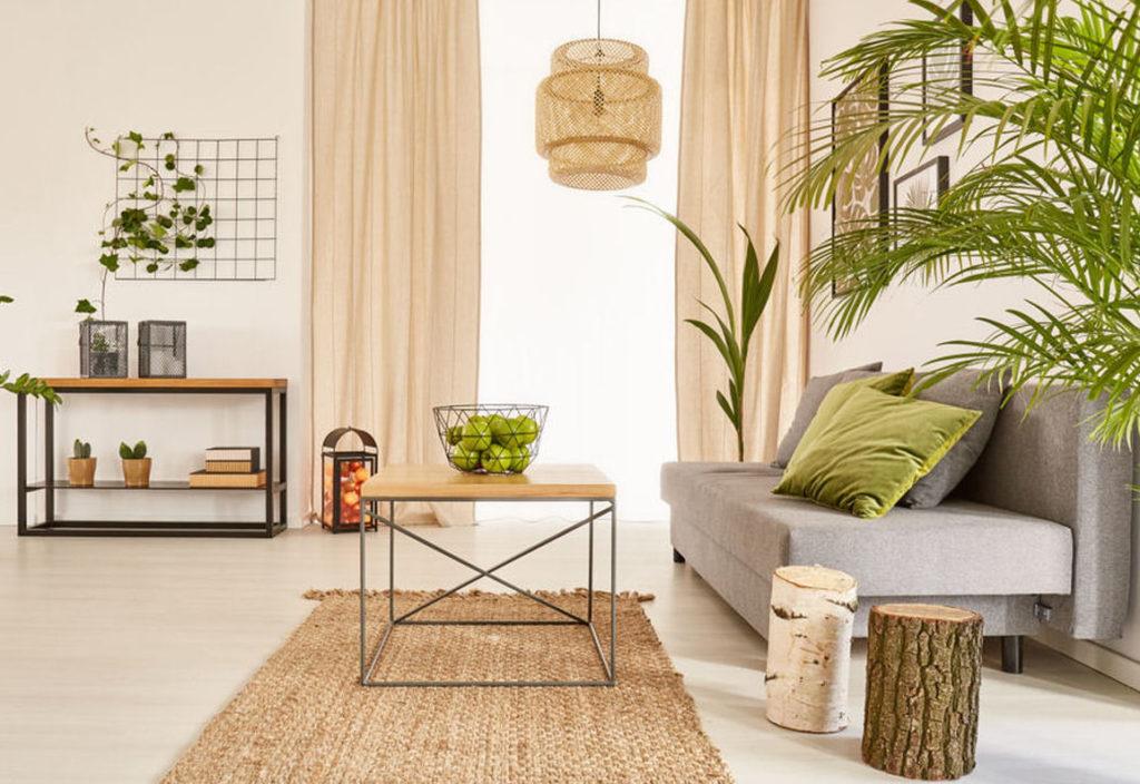 Bambu da sorte – Dracaena sanderiana
