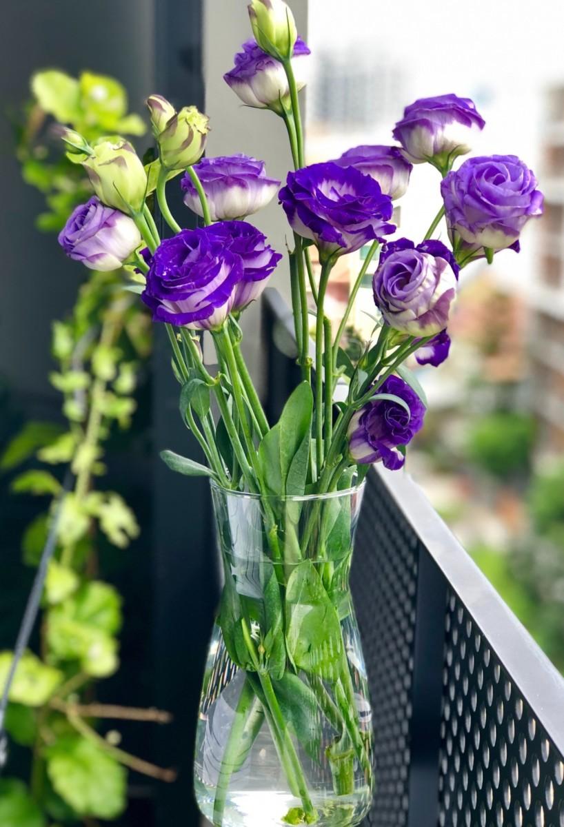 Lisianthus - Flores Mais Bonitas